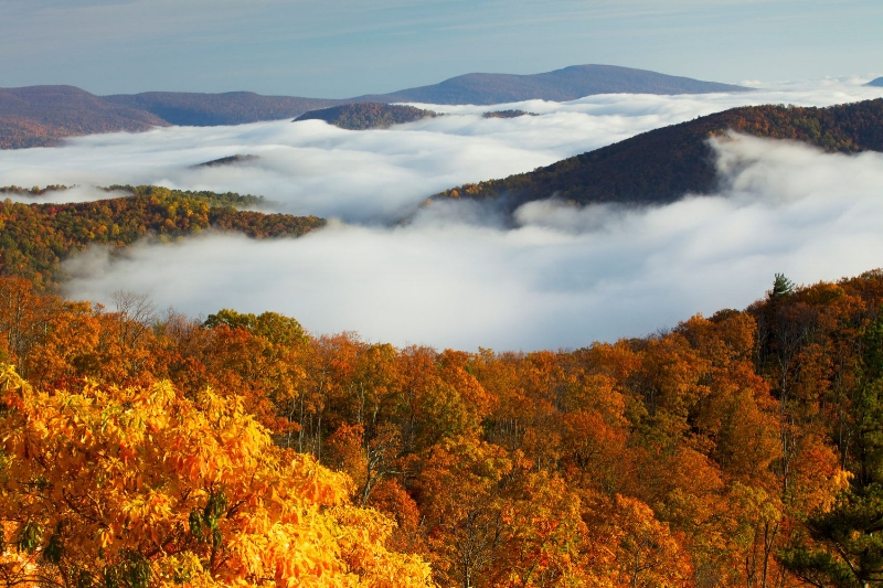 Shenandoah-National-Park.jpg