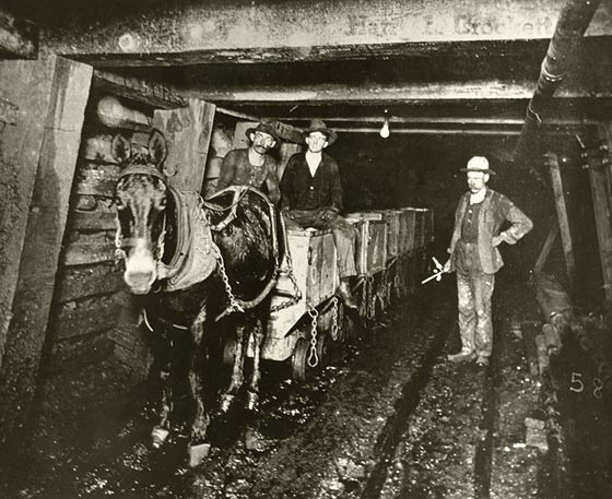 miners and mule.jpg