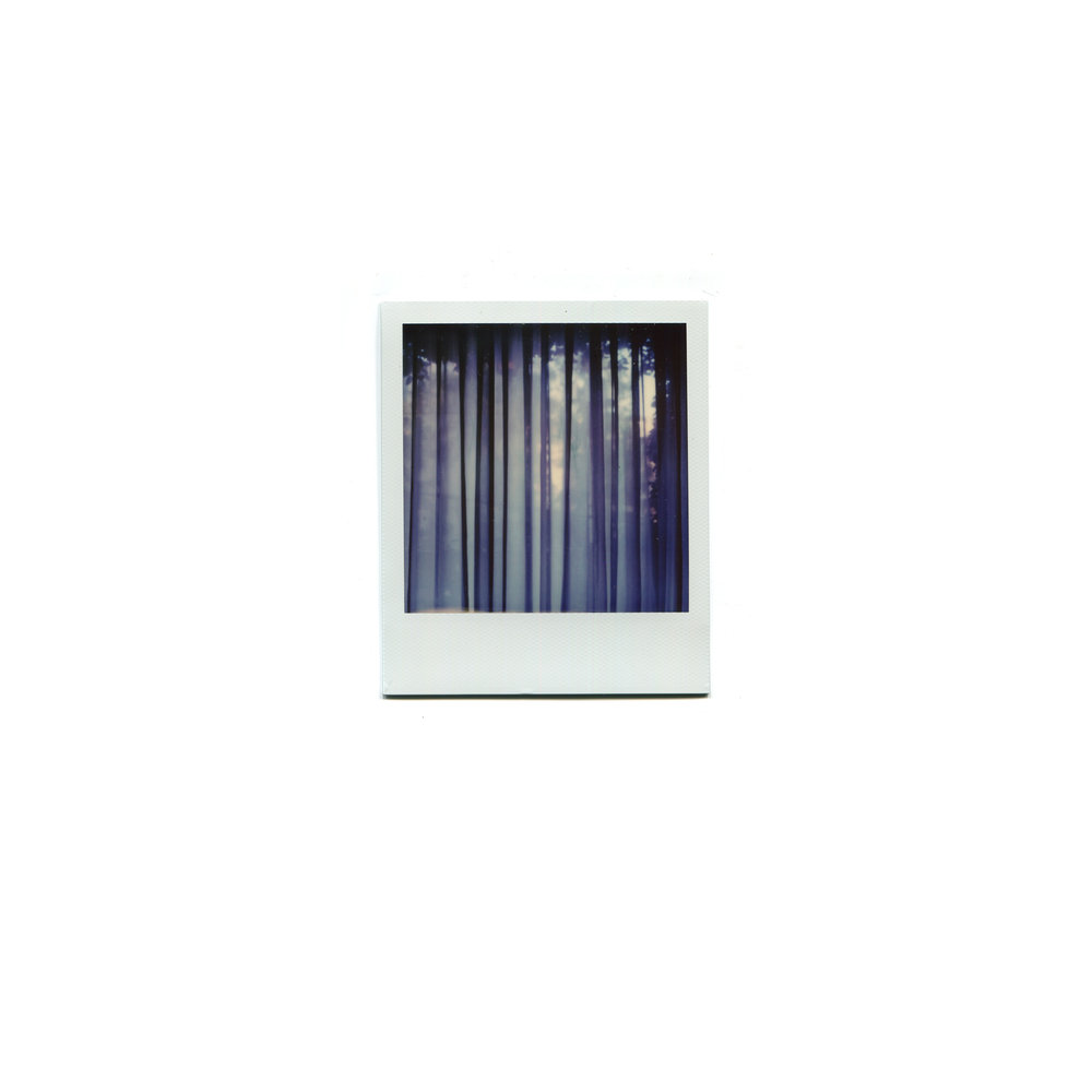 polaroid_la0171.jpg