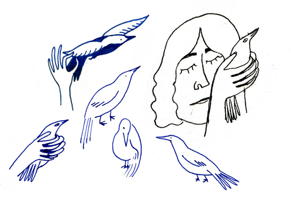 just bird things.jpg
