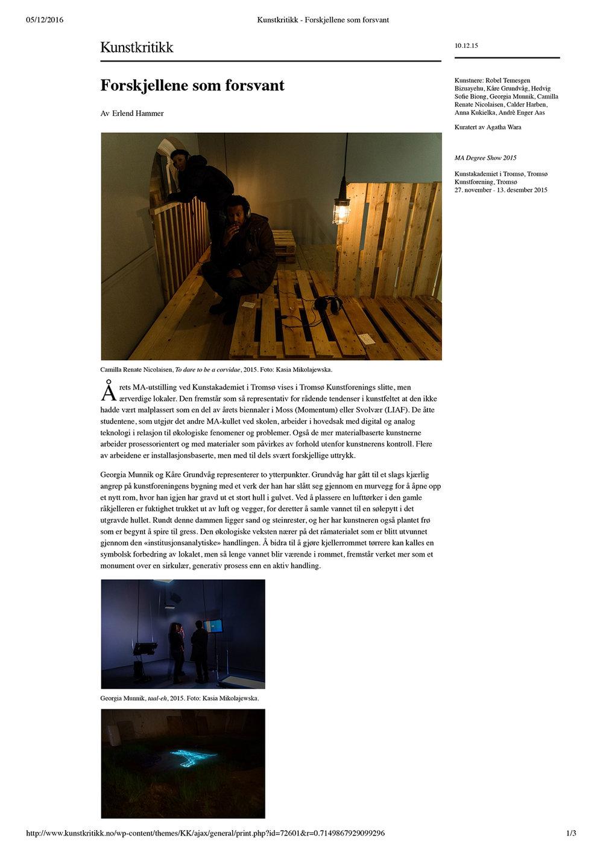 Kunstkritikk - Forskjellene som forsvant (dragged) 1.jpg