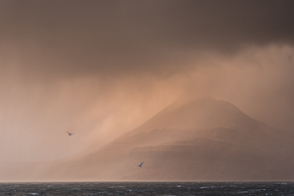 Elgol mountain squall with two gulls
