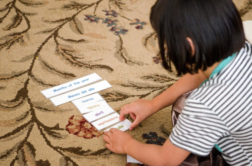 The Spanish Immersion Program - The Spanish Immersion program is an opt-in choice for students who wish to develop fluency in two languages.Prepares your child for mastery of other languagesImmersion of the Hispanic cultureAccentVocabularyMoreover, developing fluency in another language fosters the following attributes:Strong ThinkingProblem-SolvingCommunication SkillsHeightened EmpathyPriority is given to students who are fluent in Spanish already, or who were previously in a Spanish immersion program.