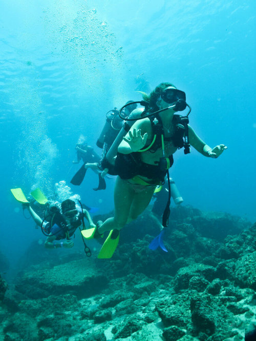 scuba dive las marietas islands things to do in puerto vallarta