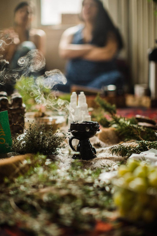 Seed, root and bloom - herbal apprenticeship