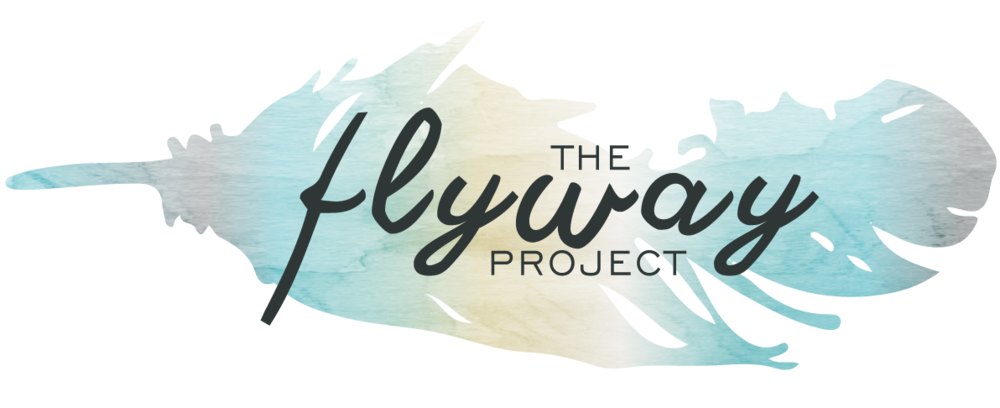 The Fly Way Project
