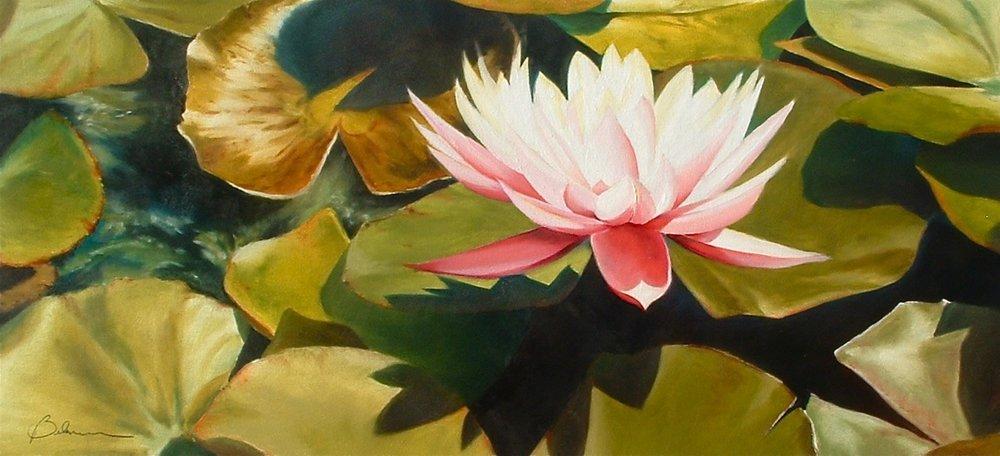 Lotus Flower Lilypads large copy.jpg