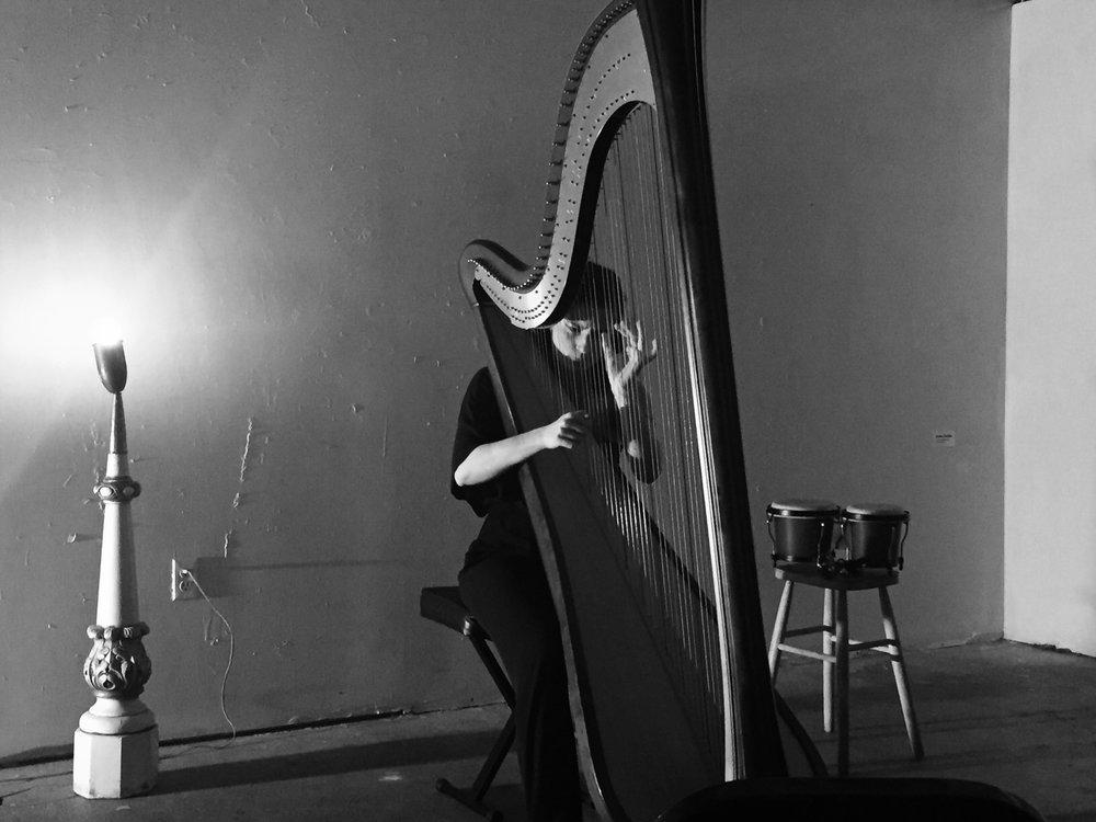 Harp Black & White 2:3.JPG