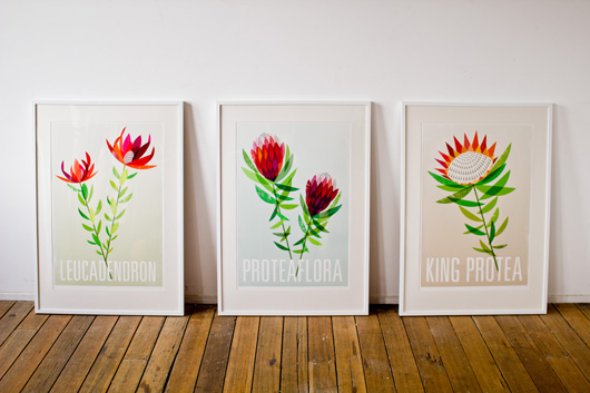 Framed digital prints by Lara Cameron