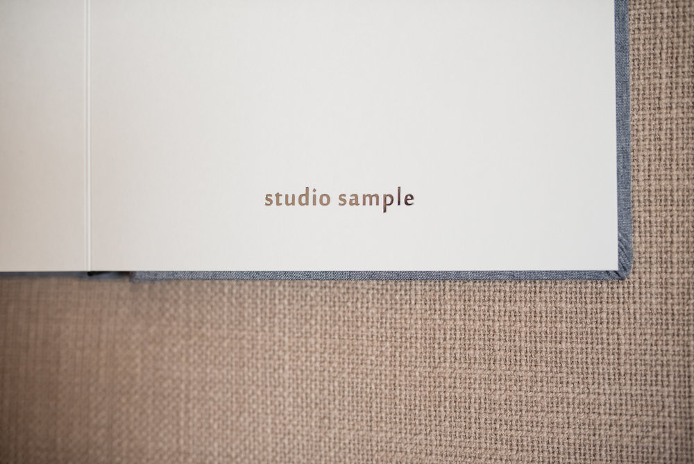 Finao ONE studio sample album