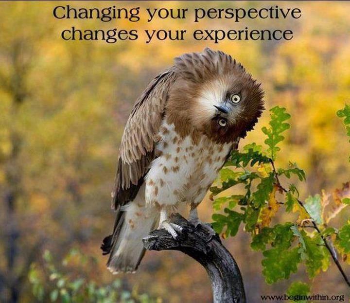 changeperspective.jpg