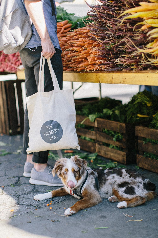 TFD_farmersmarketweek-29.jpg
