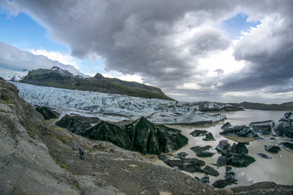 Zander wolf - iceland
