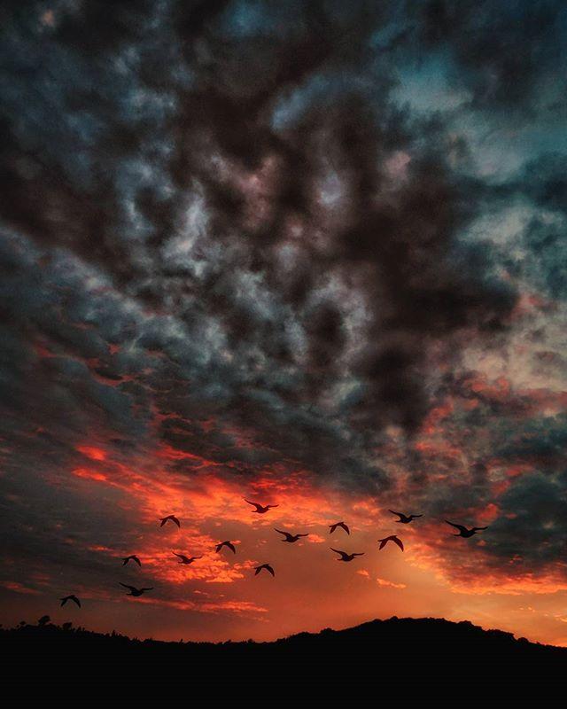 Reach for Sky 👐 . . #DreamCreateProsper