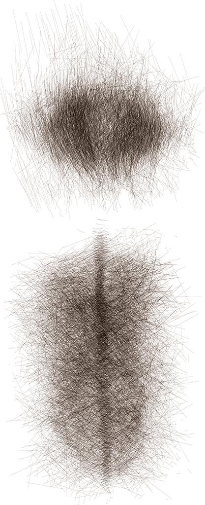 Spine, 2013