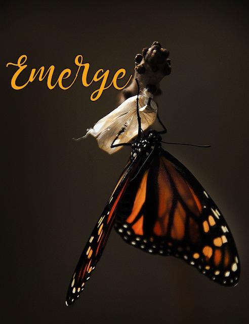 emerge.jpg