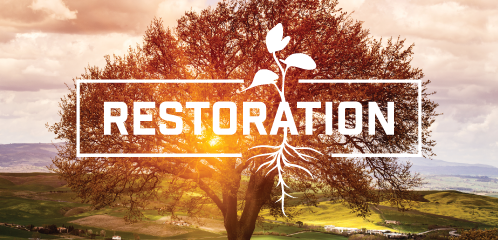 Restoration-Image.png