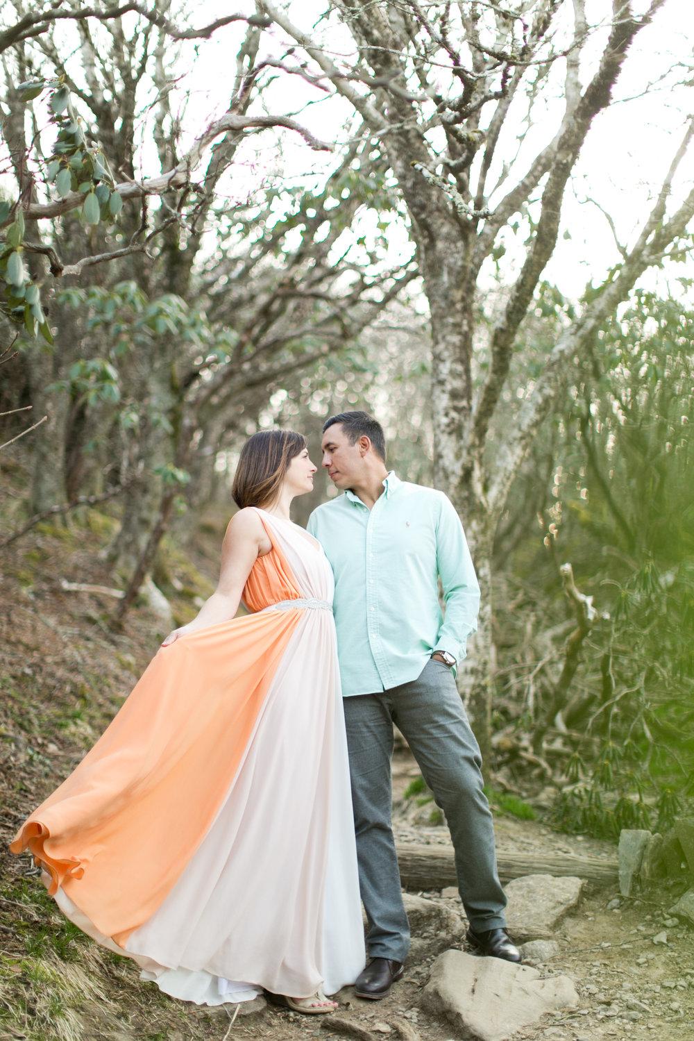 asheville_wedding_photographer7.jpg