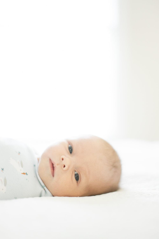 columbia_newborn_photographer_02.jpg