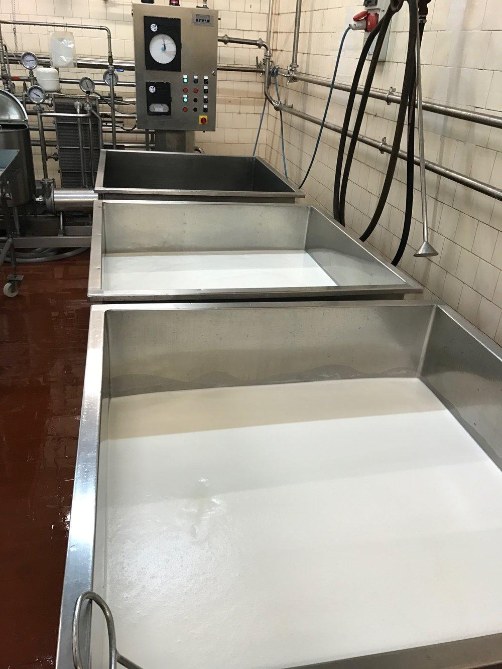 Melk pasteuriseren voor de kaas