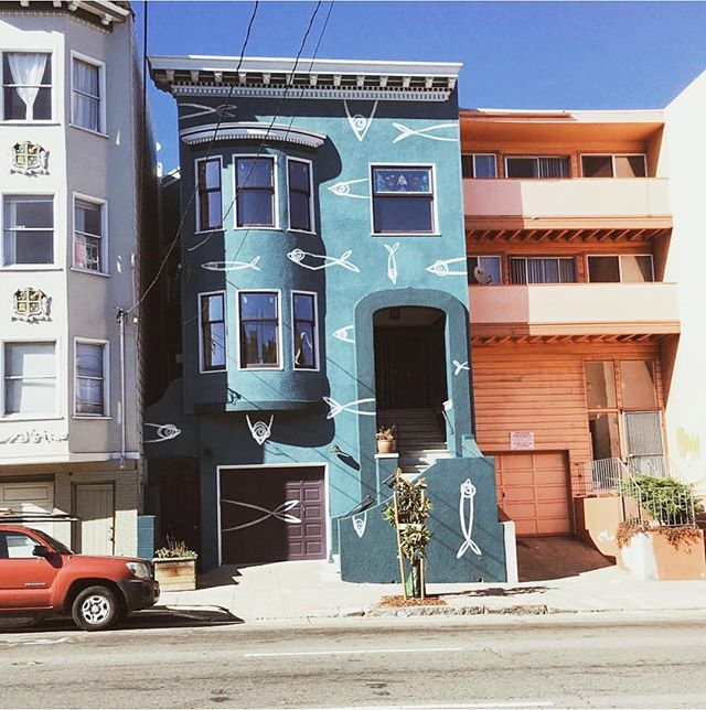 The aquarium house is not the only thing worth going to see in Hayes Valley. Hayes is a great hub for local businesses offering special fun things for the community. Check out promotions on @fawnapp. Photo by @mattia_caracciolo