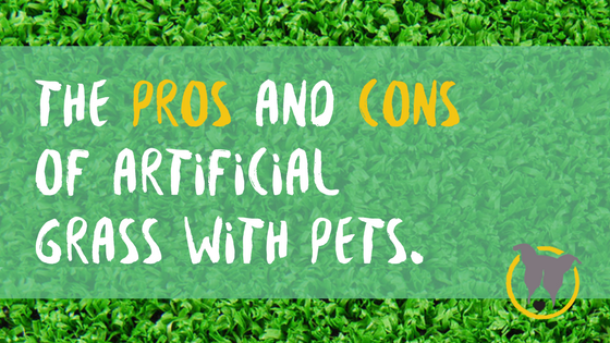 pros and cons of artificial grass with pets. Petculiar