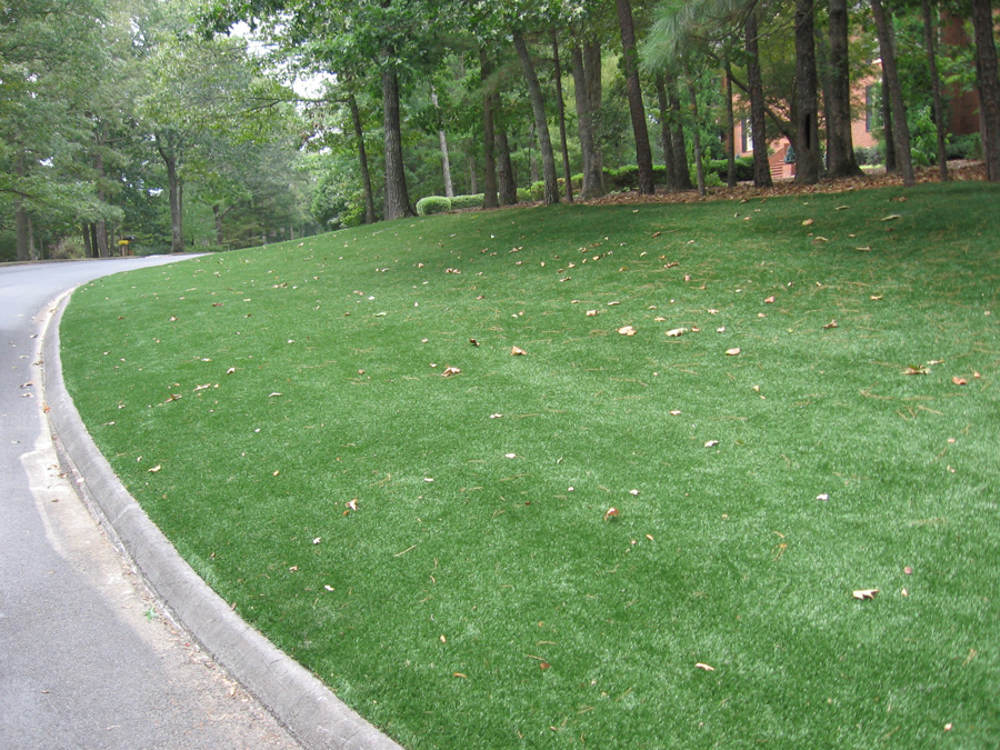 artificial grass. pets. petculiar