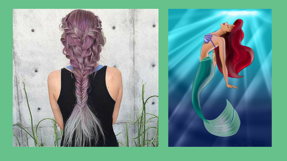 FishTail Hairstyle. Petculiar Curious About Pets.
