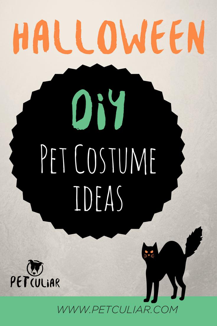 Pinterest- Halloween DIY Pet Costume ideas (1).png