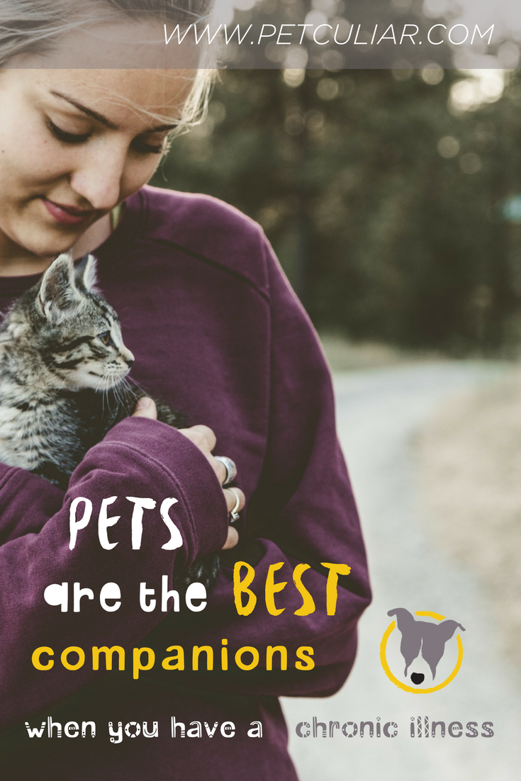 pets are the best companions when you have chronic illness. petculiar curious about pets. champion for pets. invisible illness