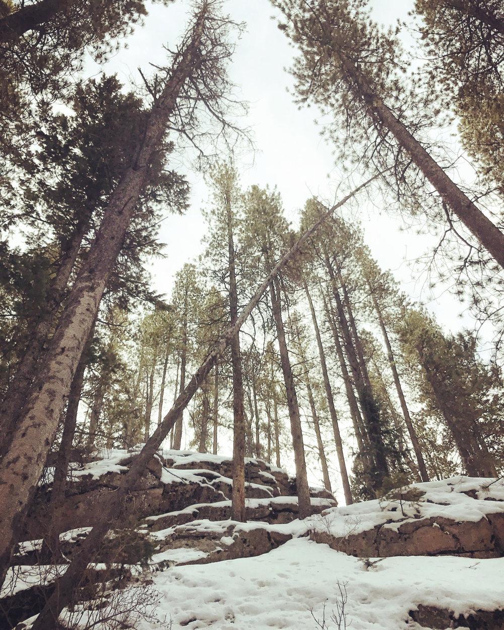 Evergreen, Colo.