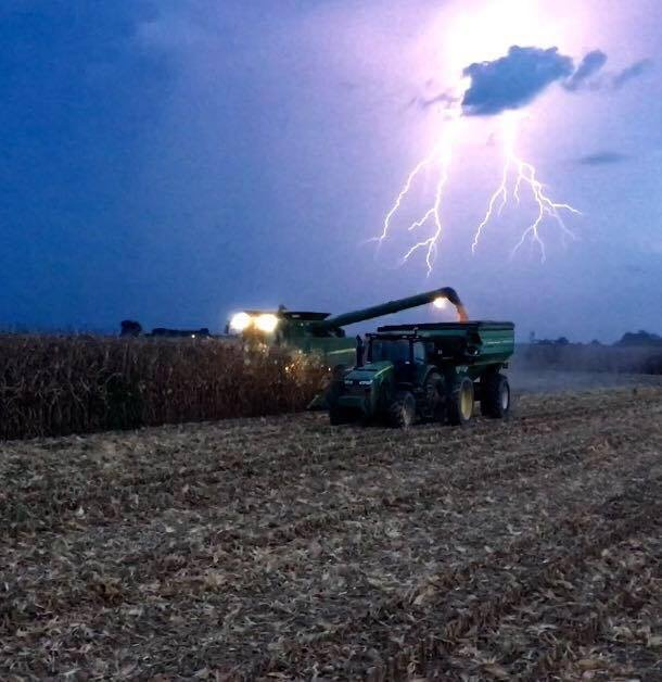 Harvesting and racing the clock before a big storm hits in Tunica, Miss. Photo by Andrew Belvedresi