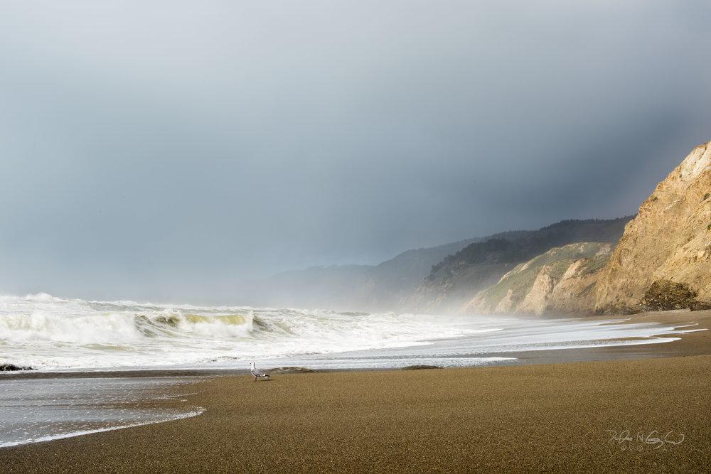 Alamere Falls Beach, Pt. Reyes National Seashore, California