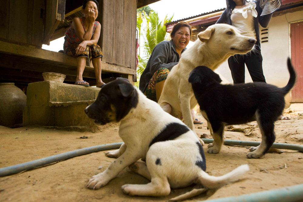 laos_2012_26.jpg