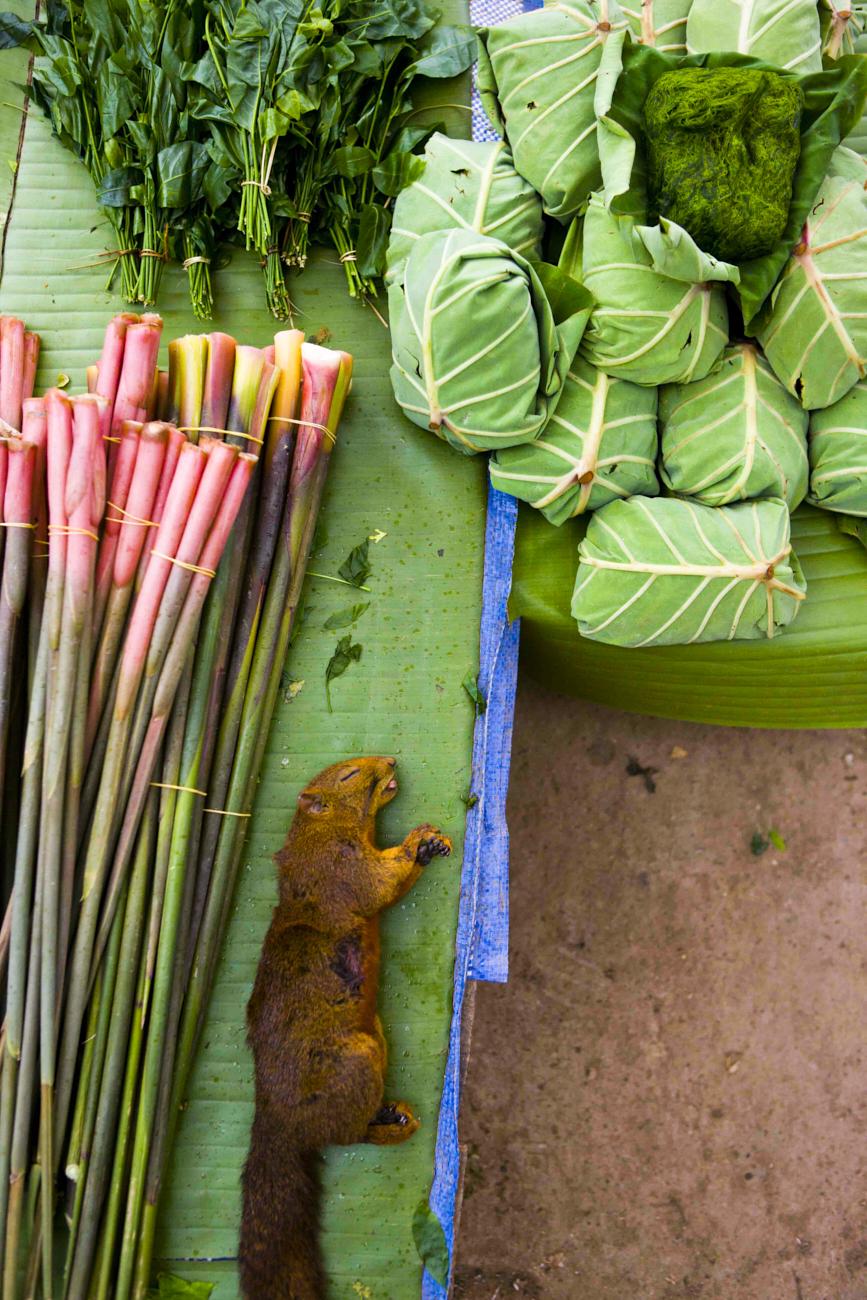 laos_2012_51.jpg