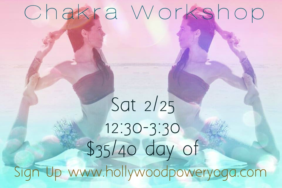 Join Sara Schwartz for a Chakra workshop Saturday February the 25th. Chant. Chakras. Channels. Learn to use the art and science of sound vibration, meditation, movement and visualization to awaken and unblock the chakras.