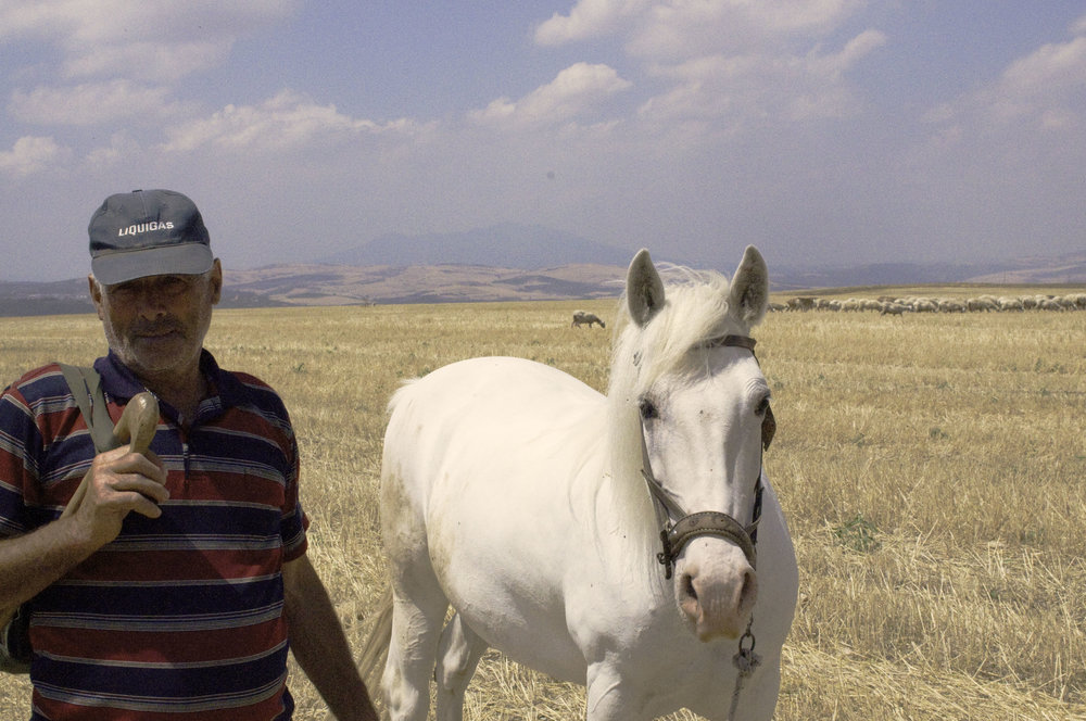 Man with Horse.jpg