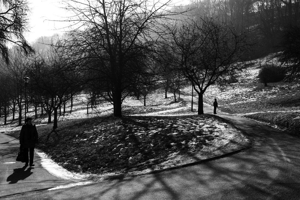 The Park.jpg