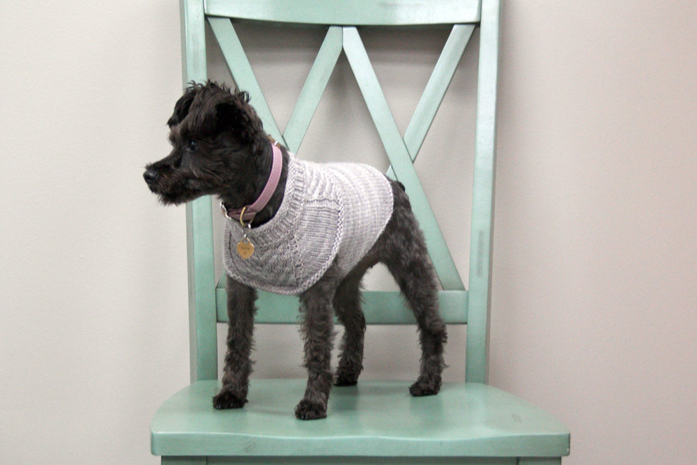 Harness-friendly dog sweater — The Stitch Between