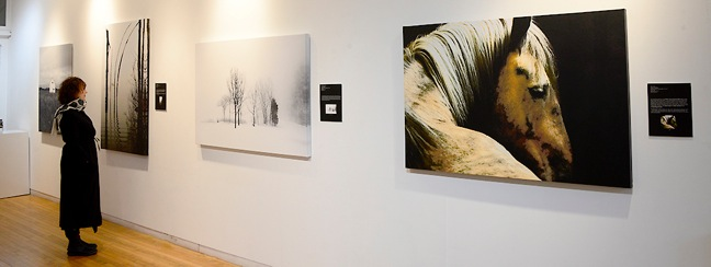 Still Point Gallery - Photographs by Jeff Baker