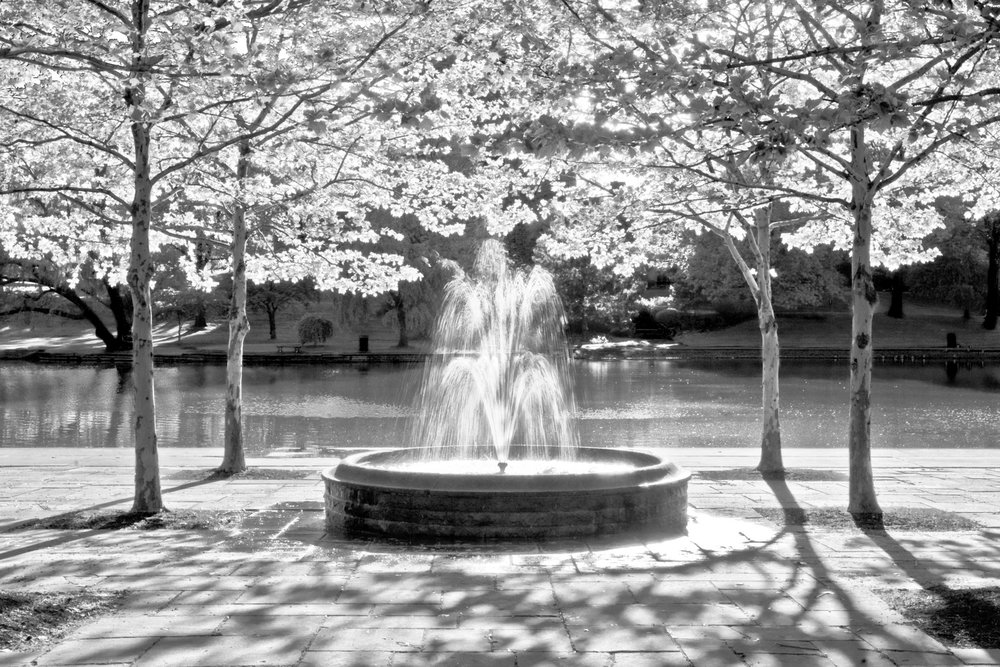 """Wade Lagoon Fountain #7"" © David J. Schwartz"