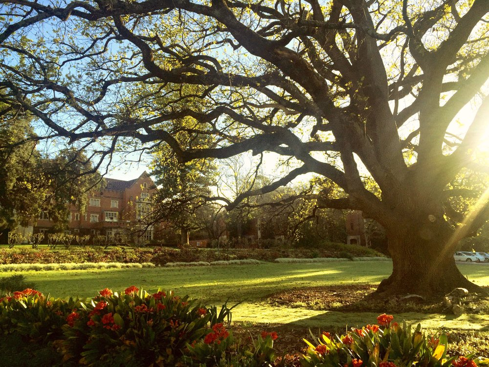 Gardens of St George's College