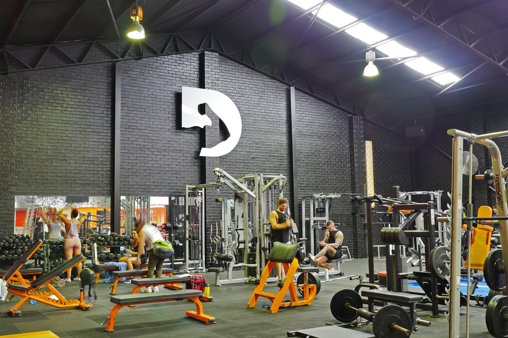 Definition Fitness - Laser Cut Logo
