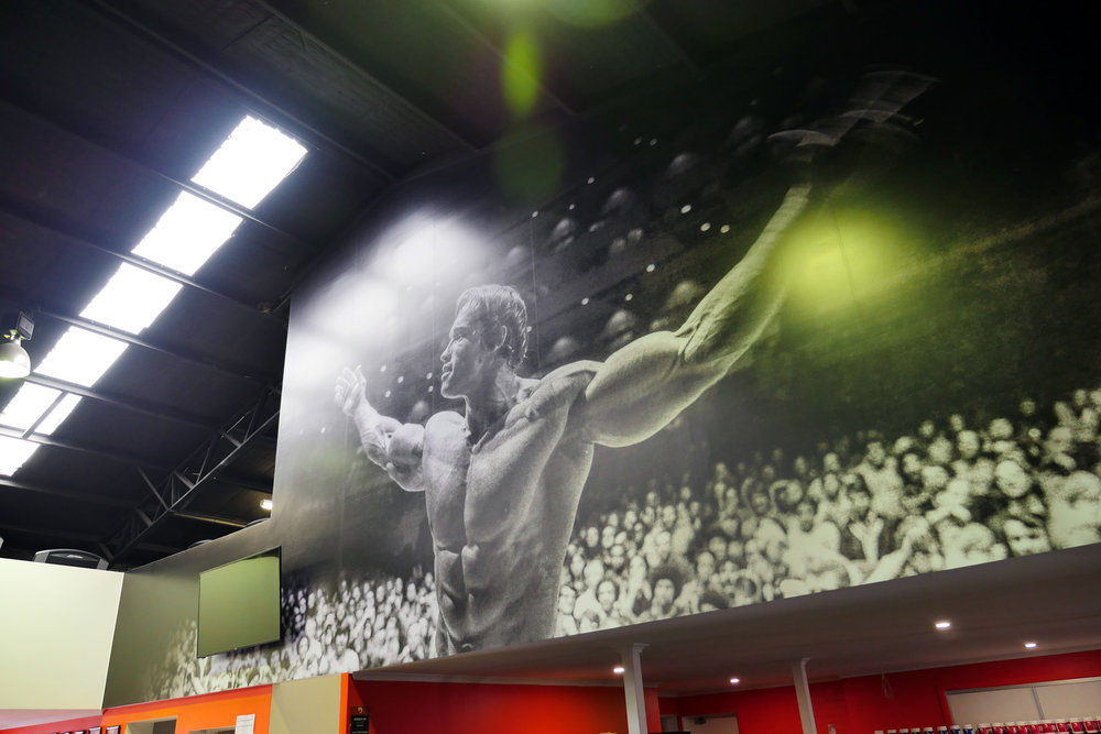 Definition Fitness, 14m x 5m wallpaper graphics by Visual Energy.