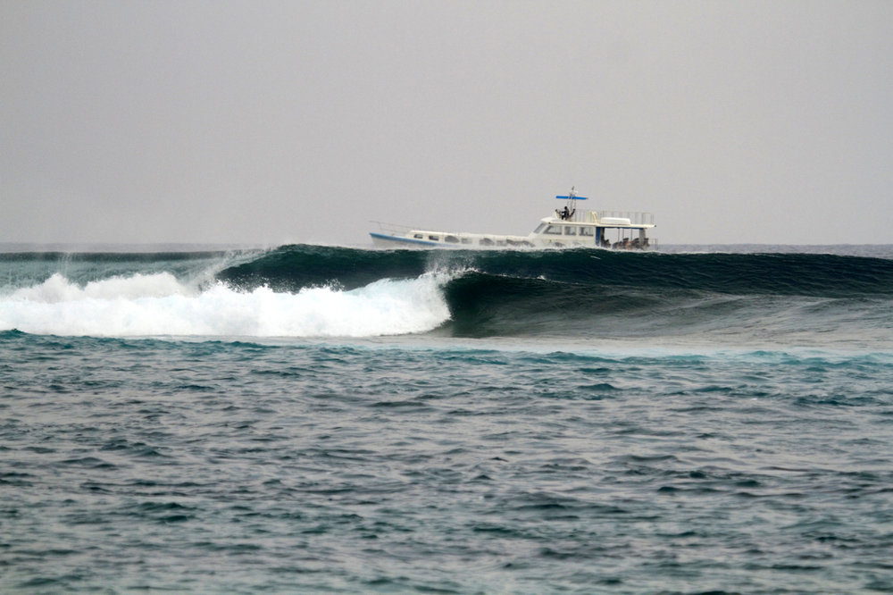 Honkey's is arguable one of the best lefts in the Maldives and can only be accessed by boat. Image: @somewheresalty