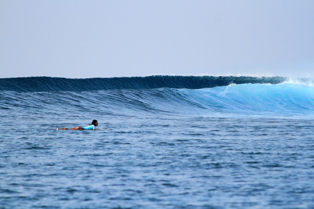 Jails offers a right hander with possible barrels only accessible by boat. Image: @somewheresalty