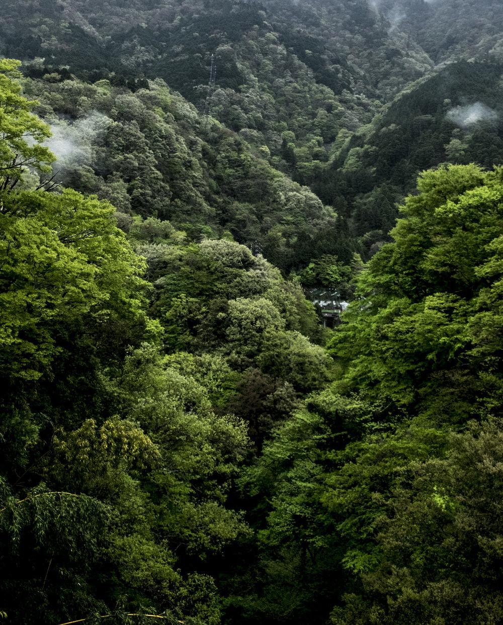 Hakone valley