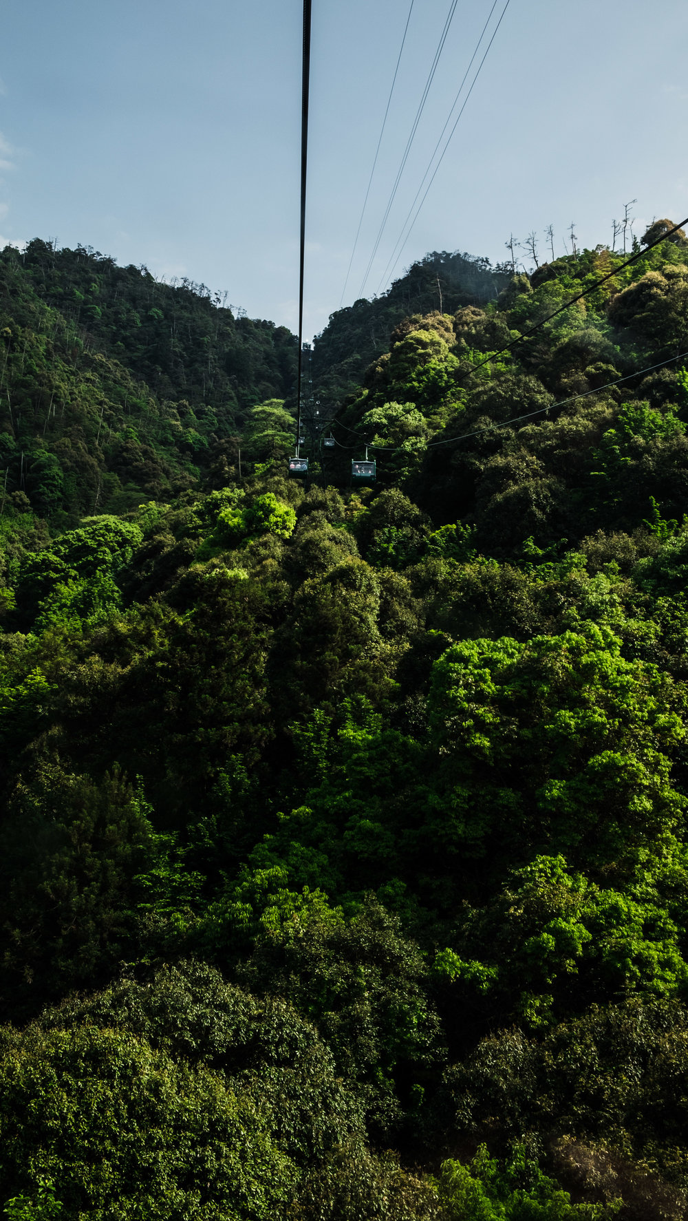 ropewaymiyajima.jpg