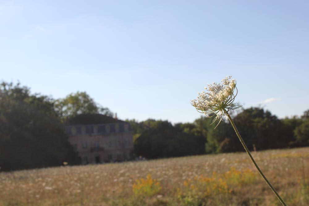 Chateau JAC in summer