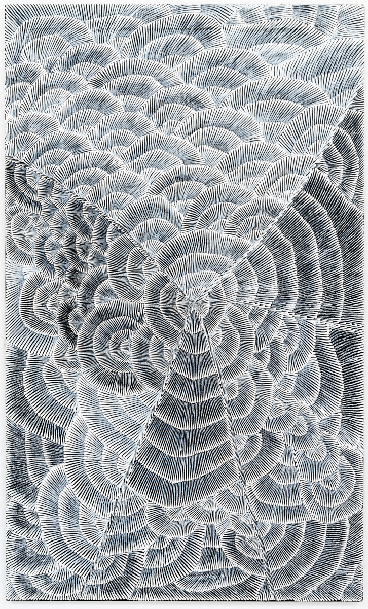 Lily Sandover, Enteebra Flowers, Acrylic on linen, 150 x 90 cm, 2000
